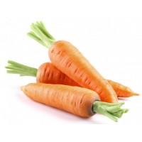 Carrot (Gazar)