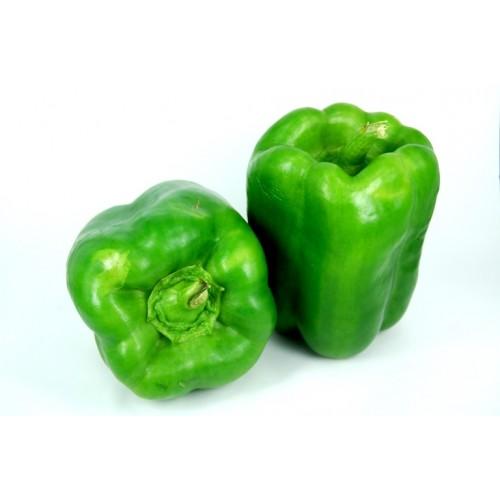 Capsicum / Shimla Mirchi - Green