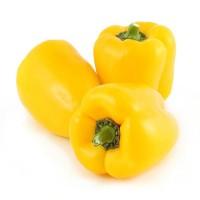 Capsicum / Shimla Mirchi - Yellow