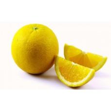 Sweet Lime / Mausambi