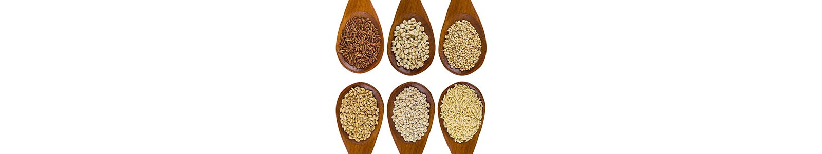 Healthy Grains & Flours