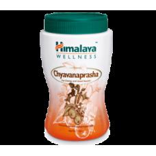 Himalaya Wellness - Chyavanaprasha