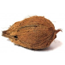 Narial (Coconut) , 1PC