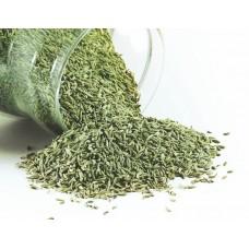 Saunf (Fennel Seeds) - Baarik