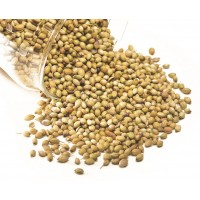 Coriander Seeds - Green